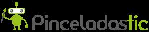 Logo pinceladastic general